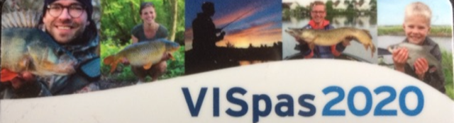 foto vispas2020website